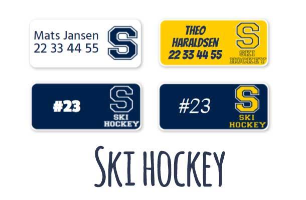 Ski ishockey